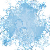 Frosty patterns Royalty Free Stock Images