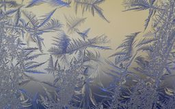 Frosty patterns on the glass.  Royalty Free Stock Photo