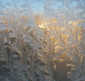 Frosty patterns on the glass Stock Photography