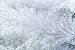 Frosty patterns Royalty Free Stock Photos