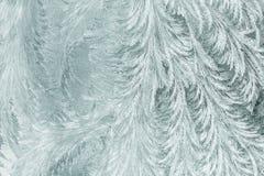 Frosty patterns Royalty Free Stock Photo