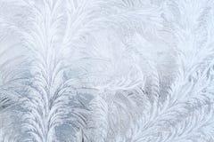 Frosty patterns Stock Photography