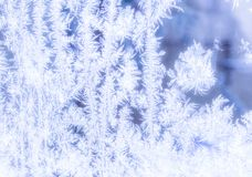 Frosty patterns. On the window Royalty Free Stock Photography