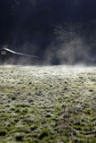 Frosty ranch field. Steam rises from a frost covered pasture on a California horse ranch royalty free stock photography
