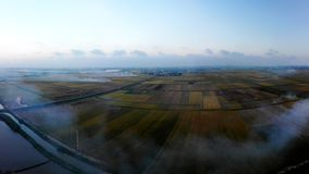 Fuzzy Smoke Covered All Fields In The Harvest royalty free stock images