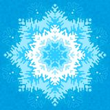 Frosty snowflake Stock Image