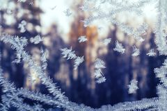 Frosty snowflake pattern on a winter window, outside the forest at sunset. stock photography