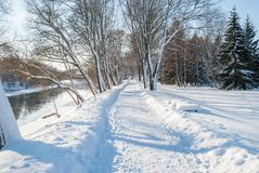 Frosty snowy day. On the river bank, trees in the snow Stock Photo
