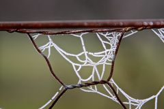 A frosty spider web - detail Stock Photography