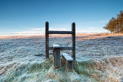 Frosty Stile Royalty Free Stock Images