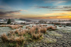 Frosty Sunrise at Bellever on Dartmoor. A magical frosty sunrise at Bellever on Dartmoor National Park in Devon Stock Photos