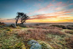 Frosty Sunrise at Helman Tor Royalty Free Stock Image