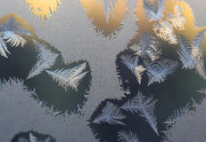 Frosty tracery Royalty Free Stock Photography