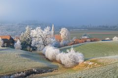 Frosty trees in the countryside stock photography