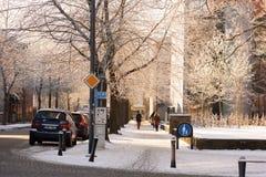 Frosty trees beside walkway stock images