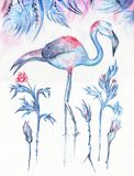 Frosty Tropics Watercolor Illustration. Blue exotic winter painting with flamingo, rose flowers and berries under leaves on white textured background Royalty Free Stock Images