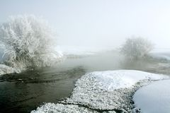 Frosty and very cold. Frost covered willows next to a fresh water stream on a very cold foggy winter day Stock Images