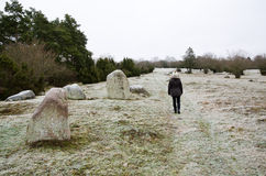 Frosty walk. A frosty walk in historic area with graves from the viking age Stock Images