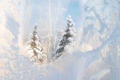 Frosty window. Beautiful frosty window, good background for greeting-cards Stock Photos