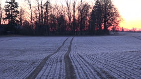 Frosty winter agriculture crop field during sunrise stock video footage