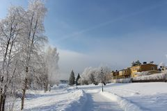 Frosty winter day in Luleå Stock Images