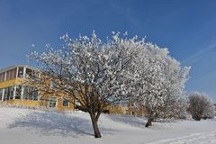 Frosty winter day in Luleå Royalty Free Stock Photos