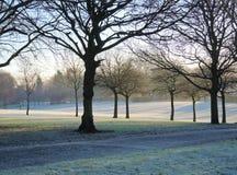 Frosty Winter Landscape Lizenzfreie Stockfotografie