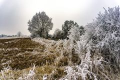 Frosty Winter Landscape Royalty Free Stock Images
