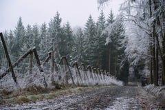 Frosty winter landscape Stock Photo