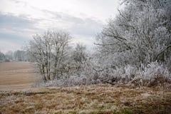Frosty winter landscape Royalty Free Stock Photos