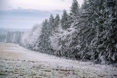 Frosty winter landscape Royalty Free Stock Image