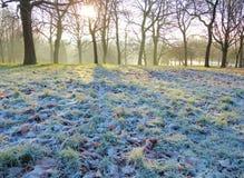 A Frosty Winter Landscape. Stock Photos