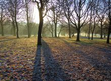 A Frosty Winter Landscape. Royalty Free Stock Image