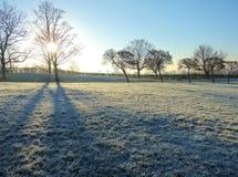 A Frosty Winter Landscape. Royalty Free Stock Photo