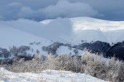 Frosty winter morning at Gemba mountain, Carpathians,Ukraine Royalty Free Stock Image