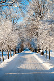Frosty winter road with snow in the cold winter Stock Photo