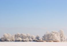 Frosty winter scene under blue sky. Frosty winter scene under the sky stock photos