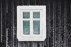 Frosty winter Royalty Free Stock Photo