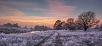Frosty winter sunrise Stock Photos