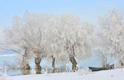 Frosty winter trees and boat Stock Photo