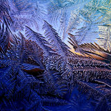 Frosty winter window, texture Royalty Free Stock Photography