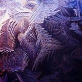 Frosty winter window, texture Stock Image