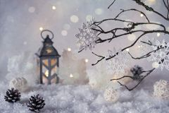 Frosty winter wonderland with snowfall and magic lights. Christmas greetings concept Royalty Free Stock Photos