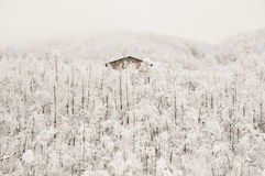 Frosty Wooden Cabin. In Italy Royalty Free Stock Photography
