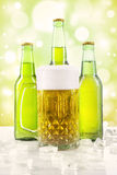 Frothy beer in the glass and bottles Royalty Free Stock Photo