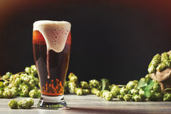 Frothy Beer With Hops. In the background - plenty of copy space for text royalty free stock photo