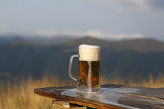 Frothy beer Stock Photos