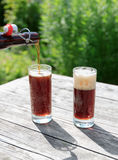 Frothy dark beer pouring into tall glasses from a brown glass bottle in summer garden on rustic wooden table Royalty Free Stock Image