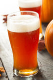 Frothy Orange Pumpkin Ale. Ready to Drink Royalty Free Stock Image