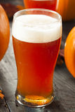 Frothy Orange Pumpkin Ale. Ready to Drink Royalty Free Stock Photography